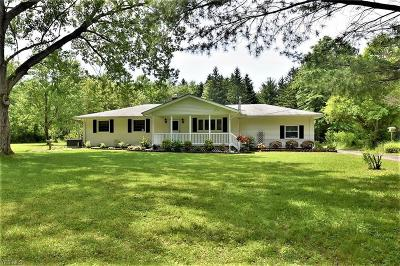 Lake County Single Family Home For Sale: 10940 Chillicothe Rd