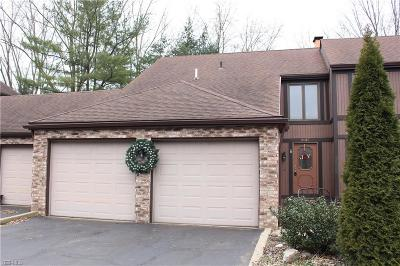 Medina County Condo/Townhouse For Sale: 5147 Park Dr