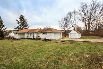 Geauga County Single Family Home For Sale: 9335 Pekin Rd