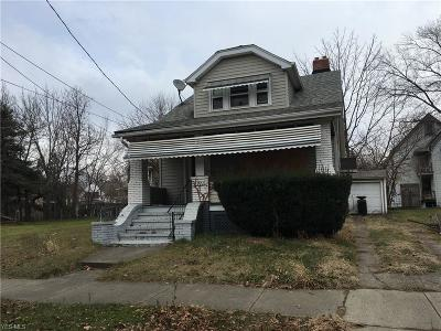 Cleveland Single Family Home For Sale: 2971 East 65th St