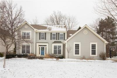 Avon, Avon Lake Single Family Home For Sale: 347 Regatta Dr