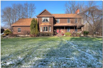 Lorain County Single Family Home For Sale: 400 West College