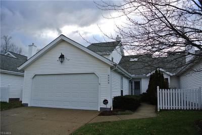 Brecksville, Broadview Heights Condo/Townhouse For Sale: 6733 Hidden Lake Trail Trl
