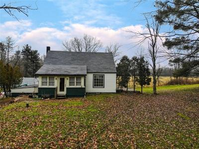 Canfield Single Family Home For Sale: 9844 North Palmyra Rd