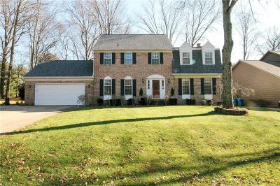 Copley Single Family Home For Sale: 169 Brookrun Dr