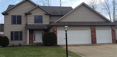 Strongsville Single Family Home For Sale: 11663 Elizabeth Cir