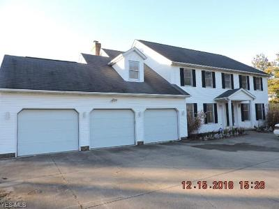 Wadsworth Single Family Home For Sale: 5450 State Rd