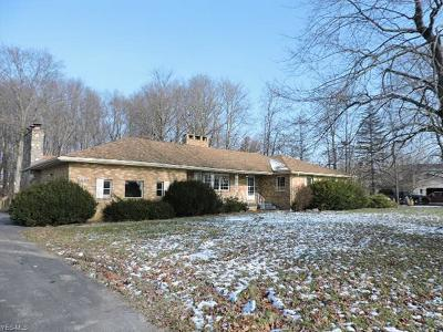 Poland OH Single Family Home For Sale: $162,000
