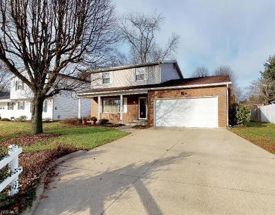 Vienna Single Family Home For Sale: 4901 8th Ave
