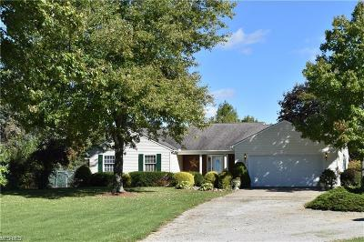 Medina County Single Family Home For Sale: 17705 West Rd