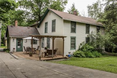 Kent Single Family Home For Sale: 308 South Chestnut St