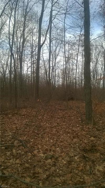 Hinckley Residential Lots & Land For Sale: 1548 King Rd