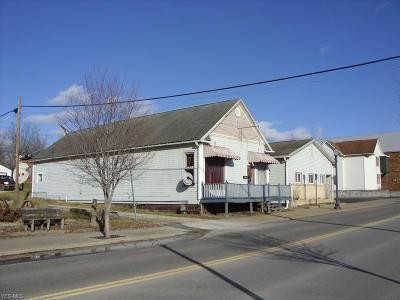 Guernsey County Commercial For Sale: 256 Main St