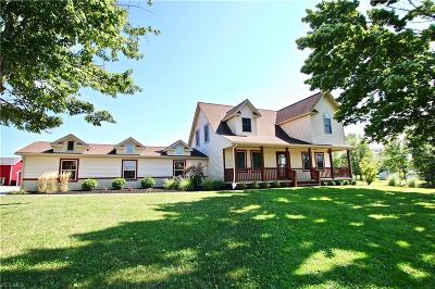 Geauga County Single Family Home For Sale: 7461 Clay Street