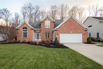 Medina Single Family Home For Sale: 3660 Turnberry Dr
