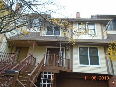 Cleveland Single Family Home For Sale: 1734 Fulton Rd