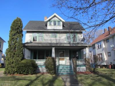 Lorain Single Family Home For Sale: 1126 West 10th St