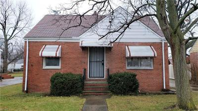 Euclid Single Family Home For Sale: 841 East 256 St