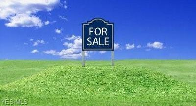 Ashtabula Residential Lots & Land For Sale: S/L 11 Florence Ave