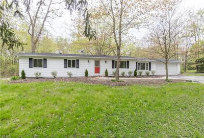 Chagrin Falls Single Family Home For Sale: 18986 Hillside Ln