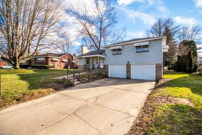 Austintown Single Family Home For Sale: 4215 Staatz