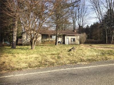Newton Falls Single Family Home For Sale: 2461 Newton Falls Tomlinson