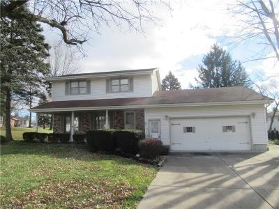 Boardman Single Family Home For Sale: 87 South Shore Dr