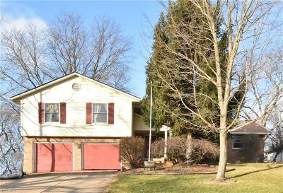 Lorain Single Family Home For Sale: 2630 West Skyline Dr