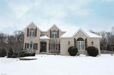 Cuyahoga County Single Family Home For Sale: 9382 Chesapeake Dr