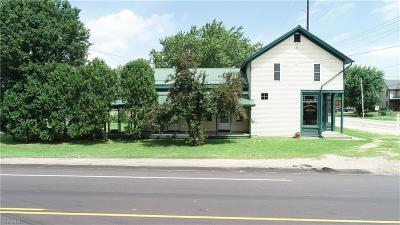 Medina County Single Family Home For Sale: 12091 Greenwich Rd