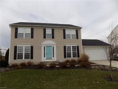 Lorain Single Family Home For Sale: 6080 Doe Crossing