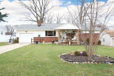 Youngstown Single Family Home For Sale: 3820 Artmar Dr