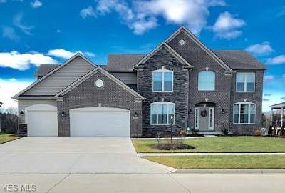 Strongsville Single Family Home For Sale: 22334 Pinnacle Point