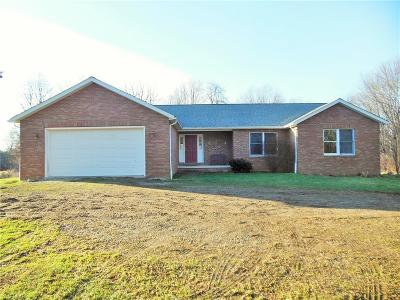 Medina County Single Family Home For Sale: 7796 Coon Club Rd