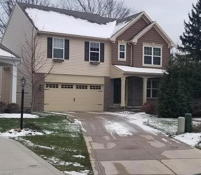 Strongsville Single Family Home For Sale: 17497 Woodshire Dr