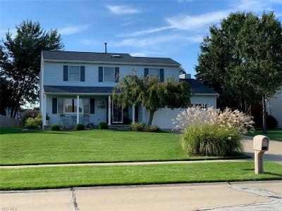 Brunswick Single Family Home For Sale: 442 Westchester Dr