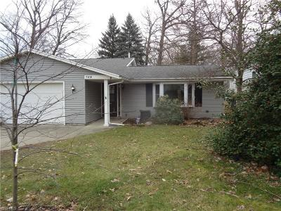 Lorain County Single Family Home For Sale: 759 Hazelwood Dr