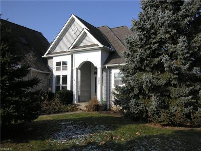 Lorain County Single Family Home For Sale: 322 Lakeside Ave