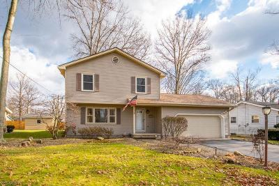 Youngstown Single Family Home For Sale: 3912 Claridge Dr