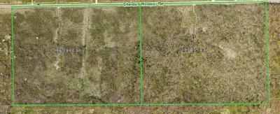 Geauga County Residential Lots & Land For Sale: 20ac Chardon Windsor