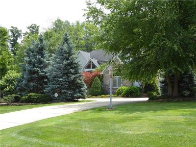 Lake County Single Family Home For Sale: 7965 Augusta Ln