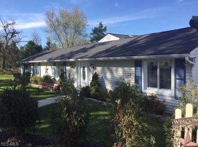 Chagrin Falls Single Family Home For Sale: 10230 Franklin Rd