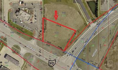 Lorain County Residential Lots & Land For Sale: 39074 Colorado Ave