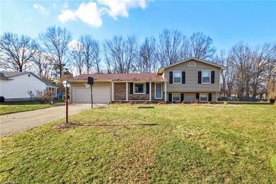 Boardman Single Family Home For Sale: 7461 Jaguar Dr