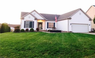 Medina County Single Family Home For Sale: 466 Rolling Hills Dr