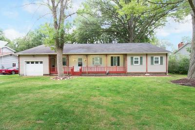 North Ridgeville Single Family Home For Sale: 36370 Hedgerow Park Dr