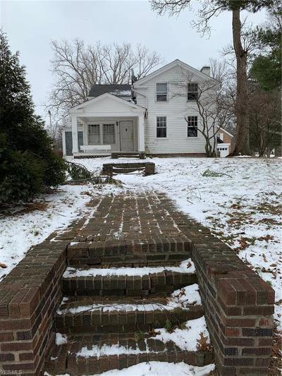 Painesville Single Family Home For Sale: 521-523 Mentor Ave