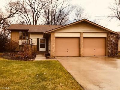 Lorain County Single Family Home For Sale: 184 Rainbow Dr