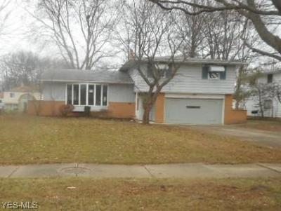 North Olmsted Single Family Home For Auction: 6557 Nancy Dr