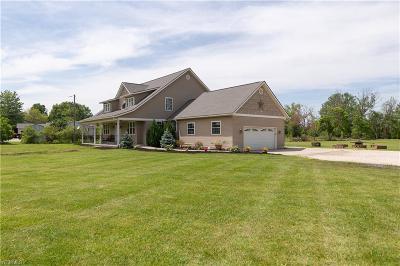 Medina Single Family Home For Sale: 2930 Stiegler Rd